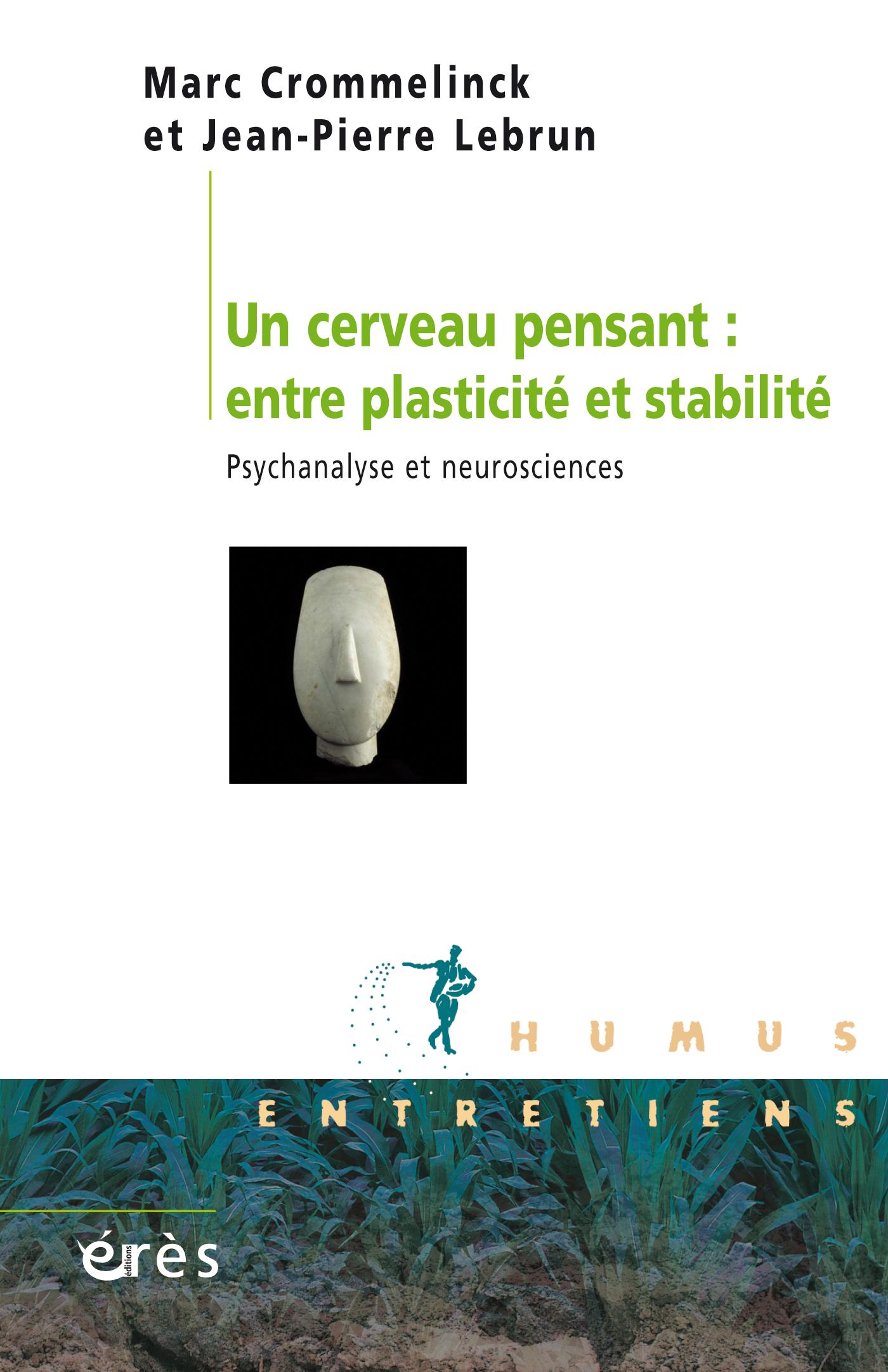 Un cerveaupensant : entre plasticité et stabilité