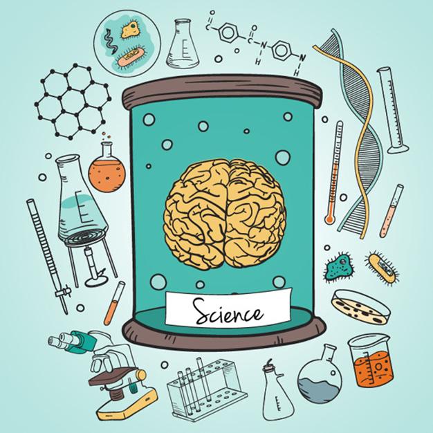Les sciences humaines sont-elles solubles dans les sciences cognitives ?